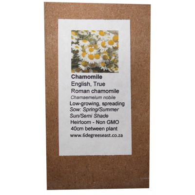 6 Degrees East Heirloom Herb Seeds - Chamomile - Roman Chamomile