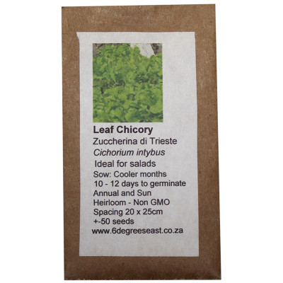 6 Degrees East Heirloom Herb Seeds - Chicory