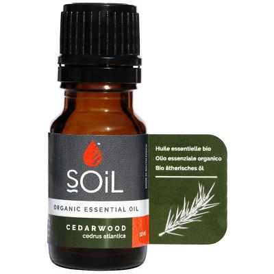 Soil Cedarwood Essential Oil