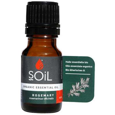 Soil Rosemary Essential Oil