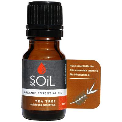 Soil Tea Tree Essential Oil