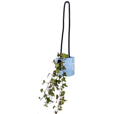 Growbag Hanging Blue Planter