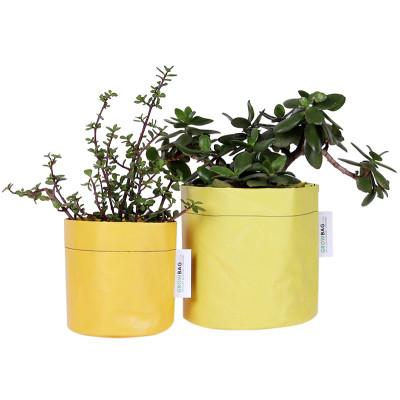 Growbag Regular Yellow Planter
