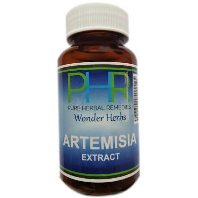 Pure Herbal Remedies Artemisia
