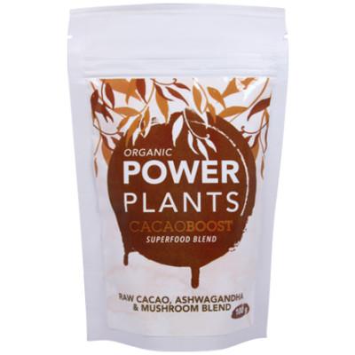 Good Life Organic CacaoBoost - Raw Cacao + Ashwagandha + Mushroom Blend