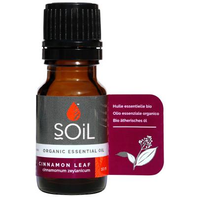 Soil Cinnamon Leaf Essential Oil