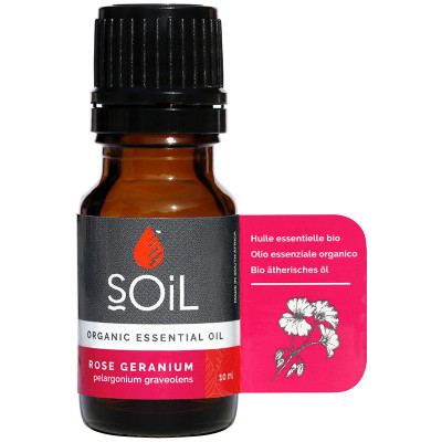 Soil Rose Geranium Essential Oil