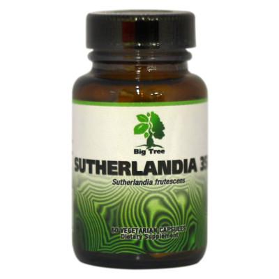 Big Tree Sutherlandia
