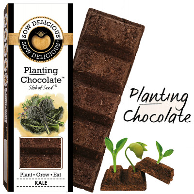 Sow Delicious Planting Chocolate - Kale