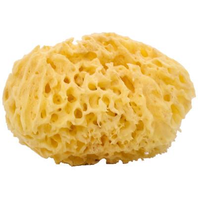 Woman-Kind Natural Honey Comb Bath Sponge, Large