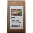 6 Degrees East Heirloom Veg Seeds - Carrots - Rainbow Mix