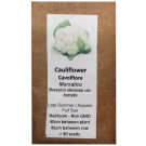 6 Degrees East Heirloom Veg Seeds - Cauliflower - Marzatico (White)