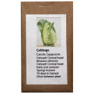 6 Degrees East Heirloom Veg Seeds - Wild Cabbage - Oxheart