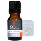 Soil Organic Spearmint Essential Oil
