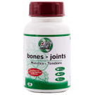 Amorganic Bones Joints Muscles