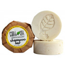 Earth Ant Shampoo Bar