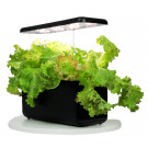 The Urbanist Indoor Planter - Black