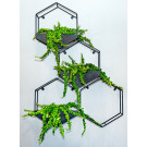 Plantr Sixy Hexagon Planter