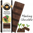Sow Delicious Planting Chocolate - Rainbow Spinach