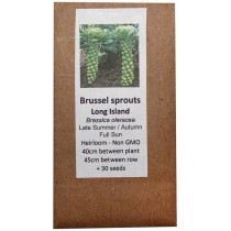 6 Degrees East Heirloom Veg Seeds - Brussels sprouts - Long Island