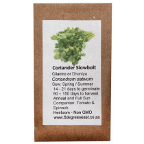 6 degrees east Herloom Herb Seeds - Coriander - Slow Bolt