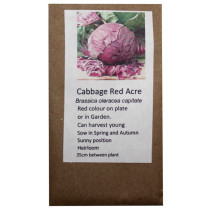 6 Degrees East Heirloom Veg Seeds - Cabbage - Red Acre