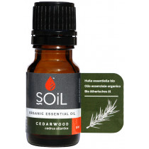 Soil Cedarwood Essential Oil