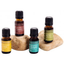 Common Cold Essential Oil Support Bundle