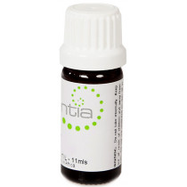 Escentia Cassia Essential Oil 11ml