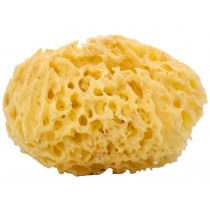 Woman-Kind Natural Honey Comb Bath Sponge, Large