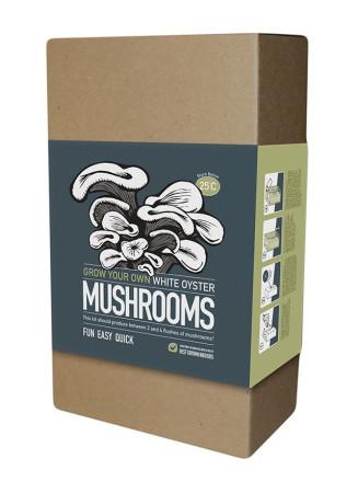 The Mushroom Factory - Oyster Mushroom Kit